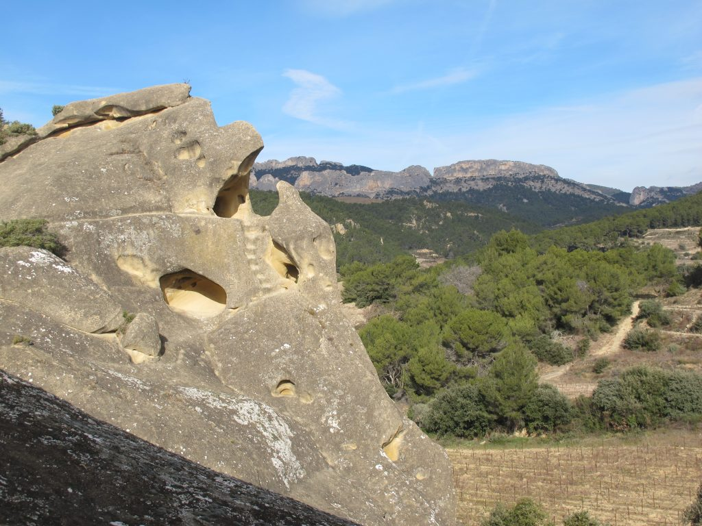 Rocalinaud and Dentelles de Montmirail